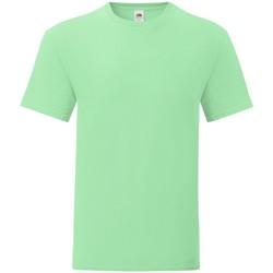 Vêtements Homme T-shirts manches courtes Fruit Of The Loom 61430 Vert pâle