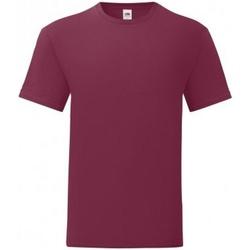 Vêtements Homme T-shirts manches courtes Fruit Of The Loom 61430 Bordeaux