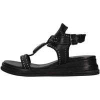 Chaussures Femme Sandales et Nu-pieds Zoe CHEYENNE02 NOIR
