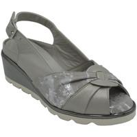 Chaussures Femme Sandales et Nu-pieds Angela Calzature ANS783ORTgrigio grigio