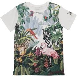 Vêtements Enfant T-shirts & Polos Interdit De Me Gronder JUNGLE Multicolore