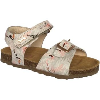 Chaussures Fille Sandales et Nu-pieds Stones and Bones 4180 CRAST rose