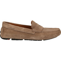 Chaussures Homme Mocassins Lloyd Mocassins Taupe