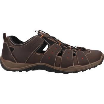 Chaussures Homme Sandales sport Salamander Derbies Braun