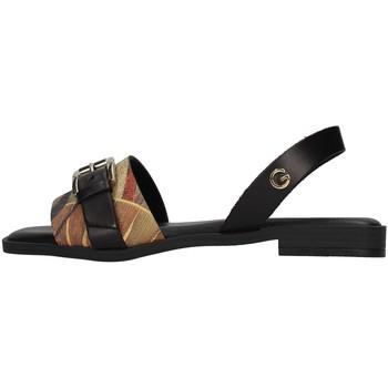 Chaussures Femme Sandales et Nu-pieds Gattinoni PEGAF6171WH BLANC