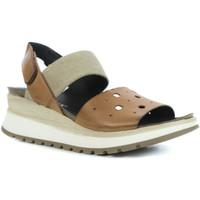 Chaussures Femme Sandales et Nu-pieds Chacal 5523 Marron