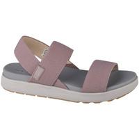 Chaussures Femme Sandales sport Keen Elle Backstrap Violet