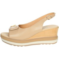 Chaussures Femme Lauren Ralph Lau Repo 20428-E1 Beige