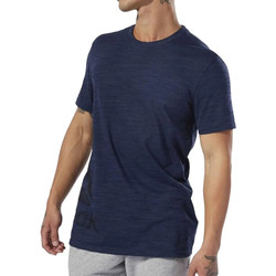 Vêtements Homme T-shirts manches courtes Reebok Sport DU3780 Bleu