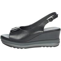 Chaussures Femme Lauren Ralph Lau Repo 20428-E1 Noir