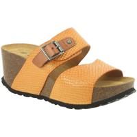 Chaussures Femme Mules Santafe SANTA BEACH Jaune