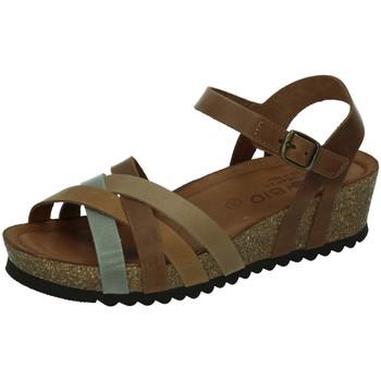 Chaussures Femme Sandales et Nu-pieds Biobio  Gris