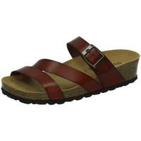 Chaussures Femme Sandales et Nu-pieds Biobio