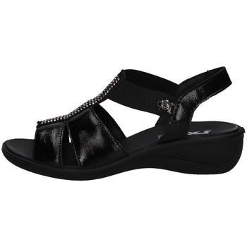 Chaussures Femme Sandales et Nu-pieds Imac 708210 Noir