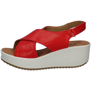 Chaussures Femme Sandales et Nu-pieds Imac 707720 Rouge