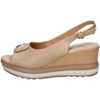 Chaussures Femme Lauren Ralph Lau Repo 20428 BEIGE