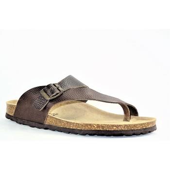 Chaussures Homme Sandales et Nu-pieds La Maison De L'espadrille MULEESPA MARRON