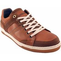 Chaussures Homme Derbies Santafe Adams marron Beige