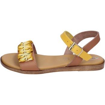 Chaussures Femme Sandales et Nu-pieds Tredy's BH93 Marron