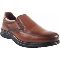 Chaussures Homme Mocassins Baerchi chaussures en cuir  1251 Marron