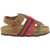 Chaussures Garçon Sandales et Nu-pieds Plakton PENNY Marron