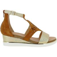 Chaussures Femme Sandales et Nu-pieds Fugitive NEVY Marron