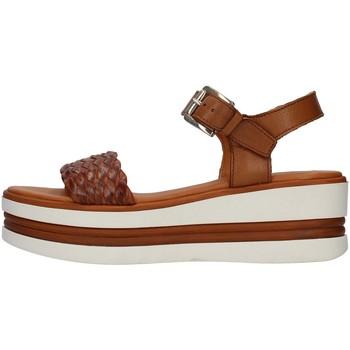 Chaussures Femme Sandales et Nu-pieds Pregunta PQ6605000 CUIR