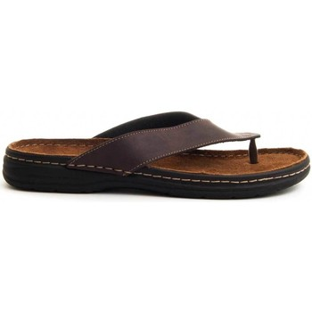 Chaussures Homme Tongs Arizona 70513 BROWN