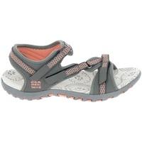 Chaussures Femme Sandales sport Elementerre Altata Gris Gris