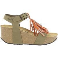 Chaussures Femme Sandales et Nu-pieds Plakton SO TONKA Vert