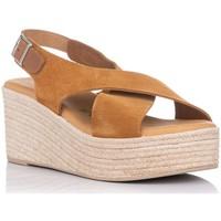 Chaussures Femme Sandales et Nu-pieds Zapp 4722 Marron