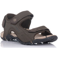 Chaussures Homme Sandales sport Chiruca TUCUMAN Marron