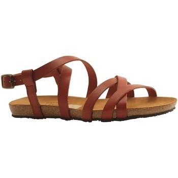 Chaussures Femme Sandales et Nu-pieds Plakton MAM VALI WHISKY