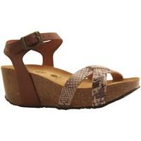 Chaussures Femme Sandales et Nu-pieds Plakton SO FINAL PITONE BEIGE