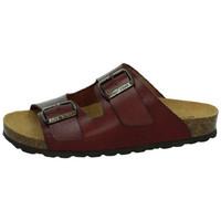 Chaussures Femme Mules Biobio