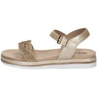 Chaussures Femme Sandales et Nu-pieds Inblu SA 30 PLATINE