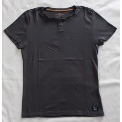 Vêtements Homme T-shirts manches courtes Tom Tailor T-Shirt Tom Tailor Autres