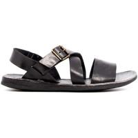 Chaussures Homme Sandales et Nu-pieds Brador 46-756 NERO