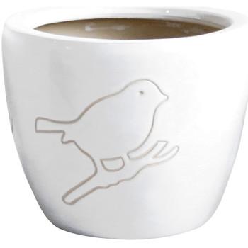 Maison & Déco Vases, caches pots d'intérieur Décolines Cache pot Bird en Terre Cuite blanc 22 cm Blanc