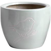 Maison & Déco Vases, caches pots d'intérieur Décolines Cache pot Bird gris en Terre Cuite 13 cm Gris