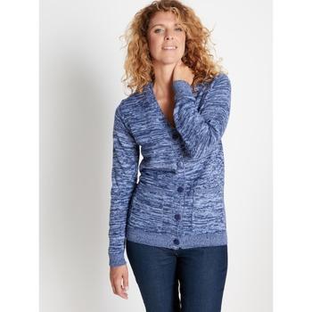 Vêtements Femme Gilets / Cardigans Balsamik Gilet classique encolure V chinbleu