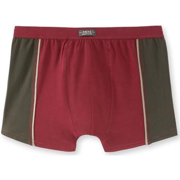 Sous-vêtements Homme Boxers Honcelac Lot de 4 shorties stretch assortis