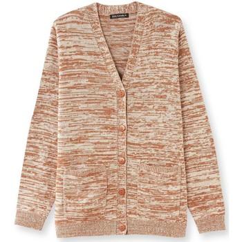 Vêtements Femme Gilets / Cardigans Balsamik Gilet classique encolure V chinnoisette