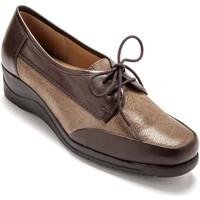 Chaussures Femme Derbies Pediconfort Derbies à lacets en cuir taupe