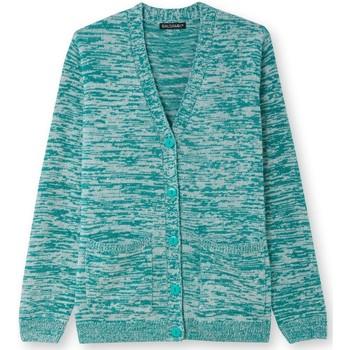 Vêtements Femme Gilets / Cardigans Balsamik Gilet classique encolure V chinvert