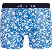 Sous-vêtements Homme Boxers Arthur - boxer Bleu indigo