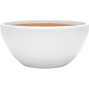 Maison & Déco Vases, caches pots d'intérieur Décolines Cache pot Beauty blanc en Terre Cuite 13 cm Blanc