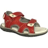 Chaussures Garçon Sandales et Nu-pieds Noel Izo Rouge