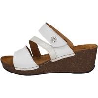Chaussures Femme Sandales et Nu-pieds Florance 22234-1 GLACE