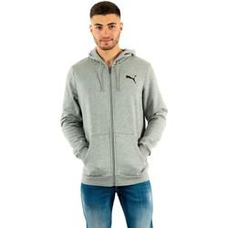 Vêtements Homme Sweats Puma fd ess 53 medium gray heather-cat gris
